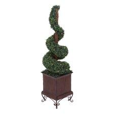 Artificial Boxwood Swirl Topiary in Planter