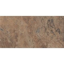 "Tundra 24"" x 12"" Glazed Porcelain Field Tile in Terrain"