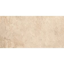 "Tundra 12"" x 24"" Glazed Porcelain Field Tile in Winter"
