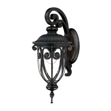 <strong>Acclaim Lighting</strong> Naples 1 Light Wall Lantern