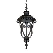 Naples 1 Light Outdoor Hanging Lantern