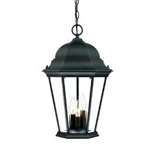 Richmond 3 Light Outdoor Hanging Lantern