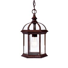 <strong>Acclaim Lighting</strong> Dover 1 Light Outdoor Hanging Lantern