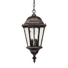 Telfair 2 Light Outdoor Hanging Lantern