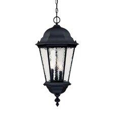 Telfair 3 Light Outdoor Hanging Lantern
