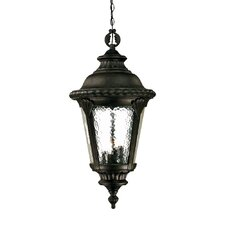<strong>Acclaim Lighting</strong> Surrey 4 Light Outdoor Hanging Lantern