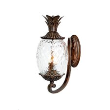 Lanai 2 Light Wall Lantern