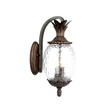 <strong>Acclaim Lighting</strong> Lanai 3 Light Wall Lantern