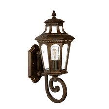 <strong>Acclaim Lighting</strong> Newcastle 1 Light Wall Lantern