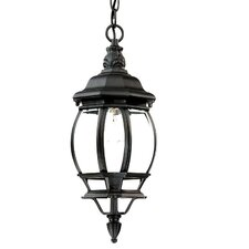 <strong>Acclaim Lighting</strong> Chateau 1 Light Outdoor Hanging Lantern