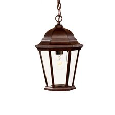 Richmond 1 Light Outdoor Hanging Lantern