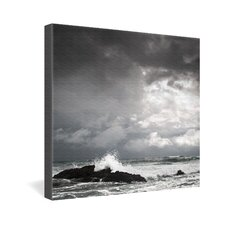 <strong>DENY Designs</strong> Bird Wanna Whistle Water Gallery Wrapped Canvas