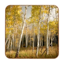 Gold Aspen by Bird Wanna Whistle Framed Photographic Print Plaque
