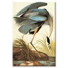 Great Blue Heron Painting Print on Canvas