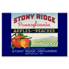 Stony Ridge Pennsylvania Apples and Peaches Canvas Wall Art