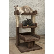 Triple Cat Perch