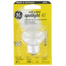 40W 120-Volt Light Bulb
