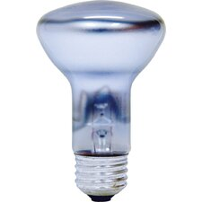 45W 120-Volt (2550K) Light Bulb