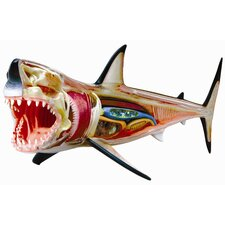 <strong>Tedco Toys</strong> 4D Vision Great White Shark Anatomy Model