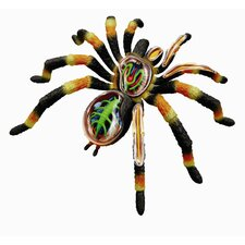 4D Vision Tarantular Spider Anatomy Model