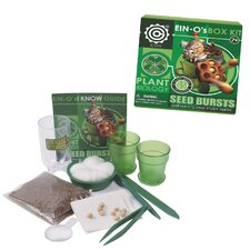 Seed Burst Box Kit