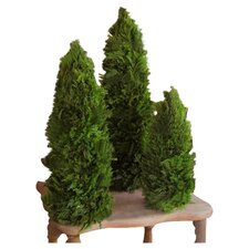 <strong>Mills Floral</strong> Cypress Cone Topiary (Set of 3)