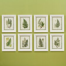 Belvedere Fern Wall Art Print (Set of 8)