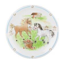 Compact 20cm Flat Plate