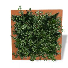 <strong>Amedeo Design</strong> Outdoor Framed Living Wall Planter