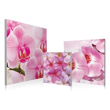 Pink Orchids Bloom 3 Piece Photographic Print