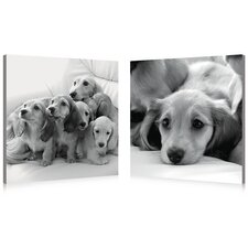 Puppies Love Modern 2 Piece Photographic Print