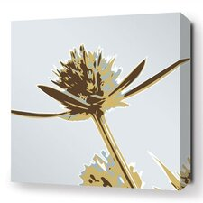 Botanicals Propeller Stretched Graphic Art on Canvas