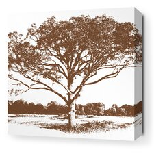 Morning Glory Tree Stretched Wall Art in Chocolate