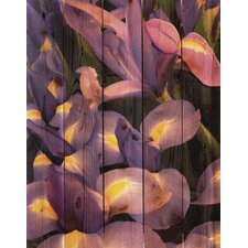<strong>Gizaun Art</strong> French Iris Wall Art