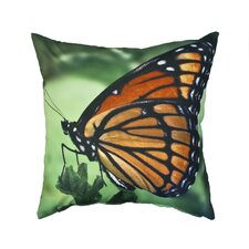 <strong>Divine Designs</strong> Brilliant Outdoor Pillow