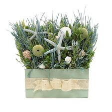 Summer Ocean Potion Grass in Rectangular Wood Planter