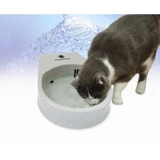 Cat Clean Flow Filter