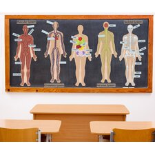 Peel and Learn Human Body Wall Decal