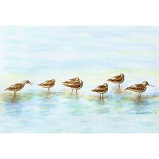 Coastal Avocets Door Mat