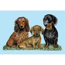 Pets Dachshunds Door Mat