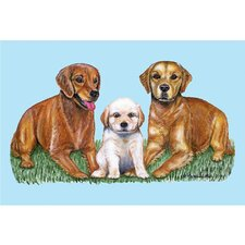 Pets Retriever Door Mat