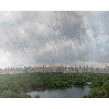Landscape Central Park by Jordan Carlyle Photographic Print