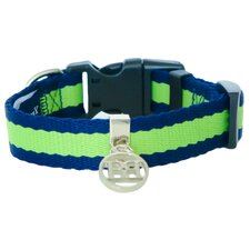 Beyond Basics Allure Adjustable Dog Collar