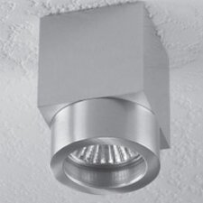 Alume 1 Light Ceiling Accent Light