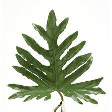 DIY Foliage Medium Philodendron Selloum Leaf (Set of 12)