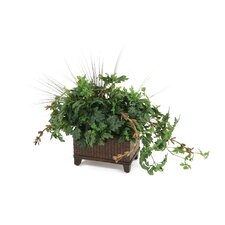 <strong>Distinctive Designs</strong> Silk Danica Ivy Floor Plant in Planter