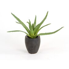 <strong>Distinctive Designs</strong> Silk Greenery Aloe Floor Plant in Pot (Set of 2)