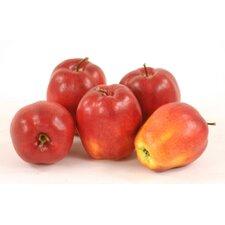 Fruit Delicious Apple Figurine (Set of 12)