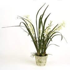 Silk Mini Cymbidium Orchid Floor Plants in Pot