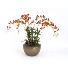 <strong>Distinctive Designs</strong> Silk Dendrobium Orchids in Planter